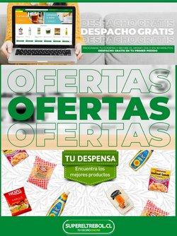 Catálogo Supermercado El Trébol ( 6 días más)