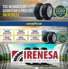 Catálogo Irenesa en Santiago ( Más de un mes )