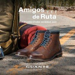 Ofertas de Guante Zapatos en el catálogo de Guante Zapatos ( Más de un mes)