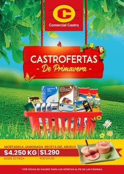 Ofertas de Comercial Castro en el catálogo de Comercial Castro ( 5 días más)