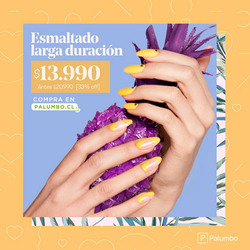 Ofertas de Palumbo  en el catálogo de Concepción