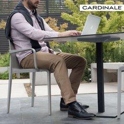 Ofertas de Cardinale en el catálogo de Cardinale ( Más de un mes)