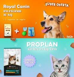 Ofertas de Supermercados y Alimentación en el catálogo de Pet City ( 2 días más)