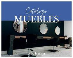 Ofertas de Pichara en el catálogo de Pichara ( Más de un mes)