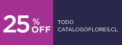 Ofertas de Flores  en el catálogo de Santiago