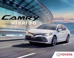 Catálogo Toyota ( Más de un mes)