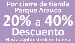 Ofertas de Muebles Sur  en el catálogo de Santiago