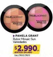 Oferta de Maquillaje Pamela Grant por $2990
