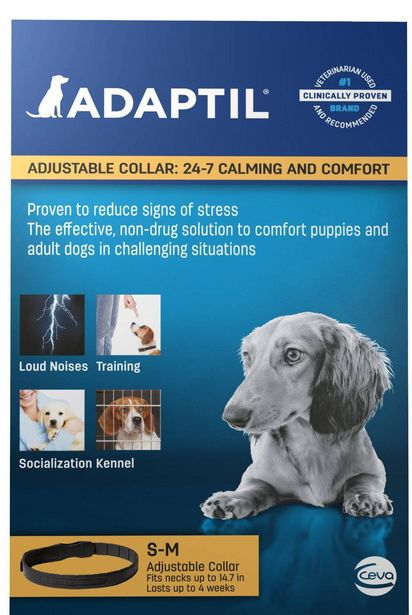 Oferta de Collar S/M Cachorros O Perros Pequeños por $15,999