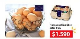 Oferta de Huevos gallina libre color por $1590